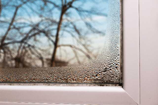 壁や窓にカビ・結露が発生しやすい