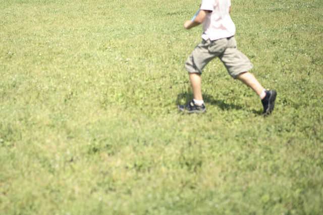 子供や犬が遊べる庭づくりのコツと注意点!ウッドデッキ・砂場などの実例やリフォーム費用も公開