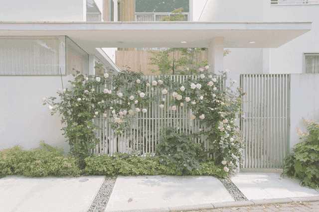 【玄関アプローチのデザイン・作り方】8つのコツと費用・注意点