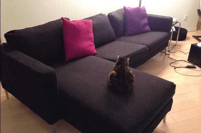 ソファーもベッドも使いたい!1台2役のソファベッドが優れもの♡