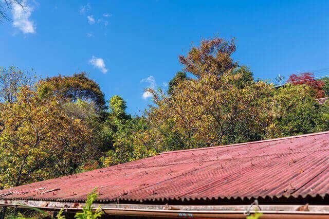 トタン屋根のリフォームは、張り替え(葺き替え)が基本
