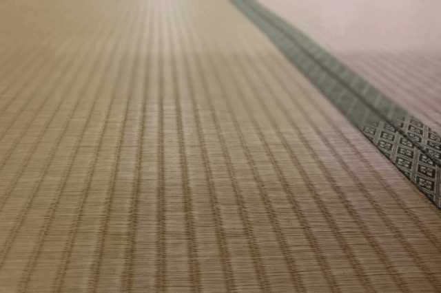 畳のカビ・ダニ対策を万全にする方法!手入れ・掃除・メンテナンスの仕方