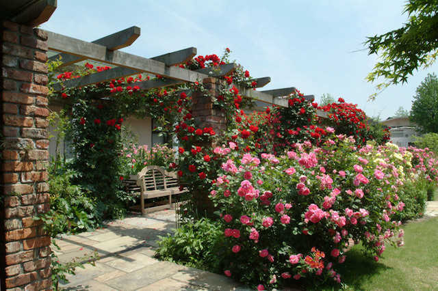 イングリッシュガーデン風の庭・ベランダの作り方と注意点