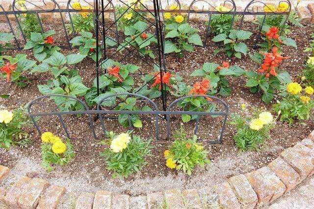 花壇のデザインの種類と作り方のポイント