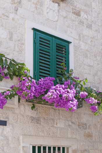 一度は憧れる♪南欧風の家の外観・外構にするための10のポイント
