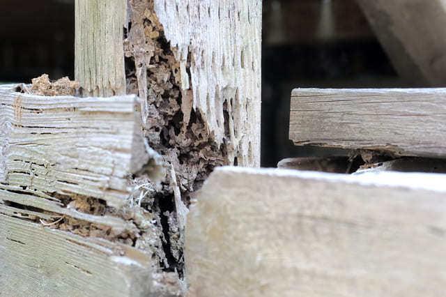 基礎や構造に関わる部分が傷んでいる場合は注意